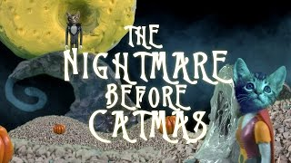 Download NIGHTMARE BEFORE CHRISTMAS (Cute Kitten Version) Video