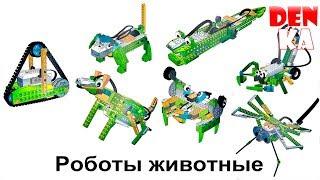 Download Модели роботов-животных из Lego Education WeDo | Винахідник | Робототехника 2.0 - часть 5 Video