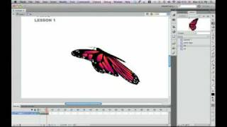 Download flash butterfly Video