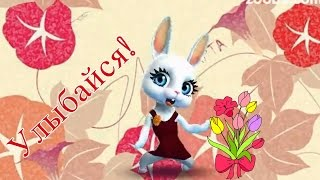 Download Zoobe Зайка С 8 марта! Лучшее поздравление! Video