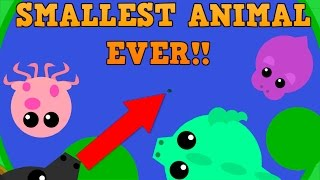 Download NEW MOPE.IO SMALLEST ANIMAL CHALLENGE!! // Part 1 // Mini Stingray vs Dragons Video