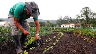 Download Importancia de la Agricultura Orgánica - TvAgro por Juan Gonzalo Angel Video