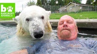 Download World's Wildest Animal Friendships: BEAST BUDDIES Video