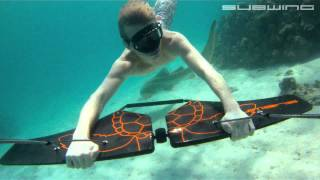 Download SUBWING...underwater madness Video