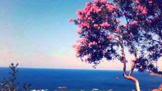 Download Cheikh Sedik & Cheba Djamila [2015]-Ghariba Video