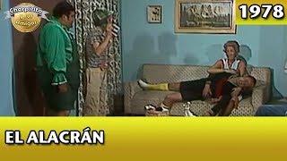 Download El Chavo | El Alacrán (Completo) Video