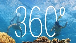 Download 360: Vlasoff Cay, Great Barrier Reef, Queensland, Australia Video