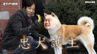Download 老天鵝快報#14【吃香蕉不吐香蕉皮 台灣價值世堅情】 Video