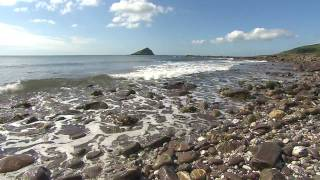 Download Living Seas - marine conservation in the UK with The Wildlife Trusts Video