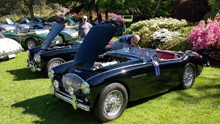 Download Our Austin-Healey 100-4 Wins the VanDusen ABFM Video