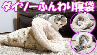 Download 激安で超暖かいダイソーのペット用ふんわり寝袋をネコ吉にプレゼントしました Video