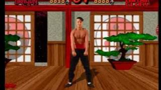 Download Way of the Warrior - 3DO - Fatality Demonstration Video