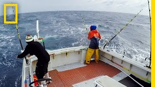 Download Two Bites for the Pin Wheel | Wicked Tuna: Outer Banks Video