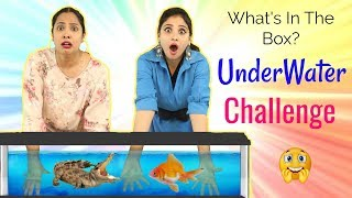 Download WHAT's In The BOX - UNDERWATER Challenge ft. ShyStyles | #Roleplay #Fun #Sketch #ShrutiArjunAnand Video
