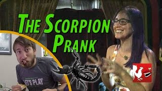 Download RT Life - The Scorpion Prank Video