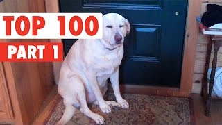Download Top 100 Best of The Year 2016 Part 1 Video