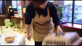 Download 猫カフェねこLIVE中 Video