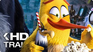 Download THE ANGRY BIRDS MOVIE 2 - 11 Minutes Trailers & Clips (2019) Video