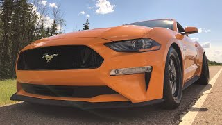 Download The 2018 Whipple Mustang Is Alive! Video