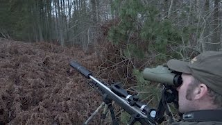Download The Shooting Show - tricky roe stalking on both sides of the border Video