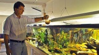 Download Ernst-Otto von Drachenfels, Aquarianer mit Leidenschaft Video