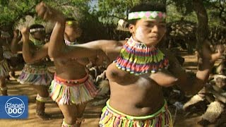 Download Special dances in Sudafrica Video