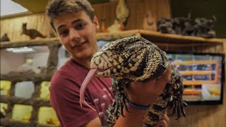 Download EXOTIC REPTILE STORE TOUR!!! Video