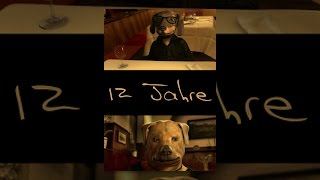 Download 12 Years - 12 Jahre Video