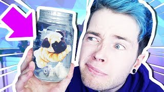 Download GROWING MY OWN PUG?!?! Video