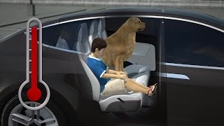 Download Tesla's Cabin Overheat Protection will keep your kids and pets safe overheating Video