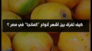 Download كيف تفرق بين انواع المانجو فى مصر Video
