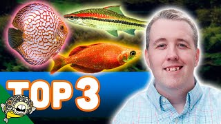 Download Our Top 3 Aquarium Fish from my store Aquarium Co-Op Located in Edmonds Washington. Video