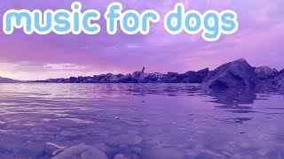 Download 8 Hours of Music to Relax and Calm Your Dog! NEW 2018! Video