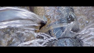 Download Preventing a national water crisis starts now Video