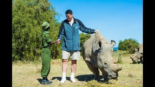 Download Last male northern white rhino visited by Yao Ming Video