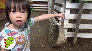 Download ZOO おでかけ 北海道 動物園 ノースサファリサッポロへ行ったよ❤レオくん Toy Kids トイキッズ Video