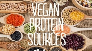Download Vegan Protein Sources & Meat Substitutes | Fablunch Video