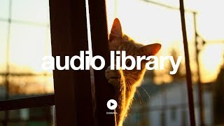 Download Investigations - Kevin MacLeod (No Copyright Music) Video