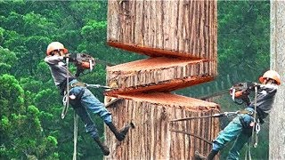 Download THE BRAVEST AND COOLEST WORKERS IN THE WORLD! Video