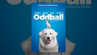 Download Oddball Video