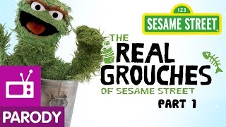 Download Meet The Real Grouches of Sesame Street   Real Housewives Parody   Part 1 of 3 Video