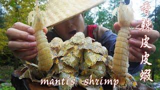 Download 【Shyo video】300元買4斤皮皮蝦,加上辣椒放竹筒裡一燒,這味道真讓人著迷 Video