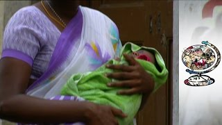 Download Exposing India's Illegal Baby Trade Video