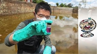 Download How China's Pollution Became a National Emergency Video