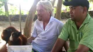 Download Animals of Necker Island Video