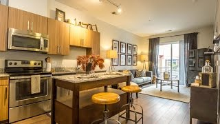 Download THE SHELBY | BRAND NEW One Bedroom Apartment Home Tour | Alexandria Apartments Video