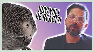 Download GEORGE'S REACTION TO RESCUED PARROT - ″CAN WE KEEP HIM??″😱 Video