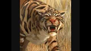 Download Top 10 Most Dangerous Prehistoric Animals (NO DINOSAURS) Video