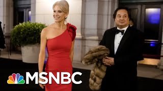 Download The Bizarre World Of Kellyanne Conway & George Conway | Deadline | MSNBC Video