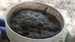 Download How to brew 5 Gallons of Worm Casting Tea Video